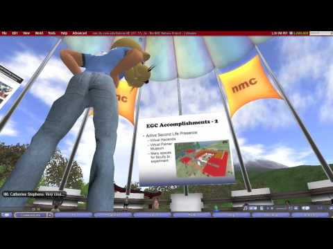 Building an Educational Gaming Initiative in Higher Education