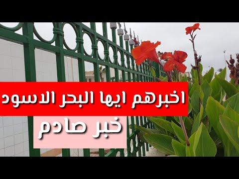 مسلسل أخبرهم ايها البحر الأسود الموسم الثالث انفصال الابطال الرئيسيين والسبب!!!!