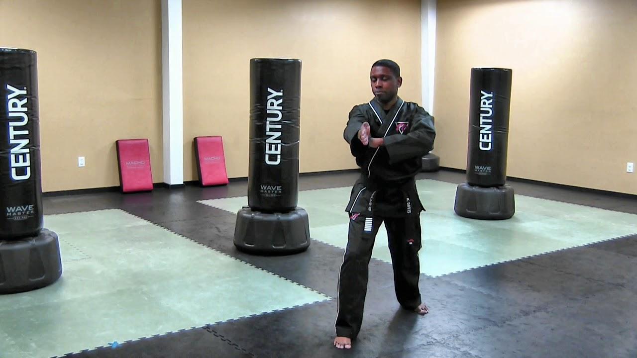 TaeKwonDo Training Videos   Punches, Blocks & Kicks   Davis