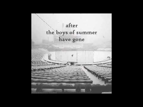 The Boys Of Summer - Cover