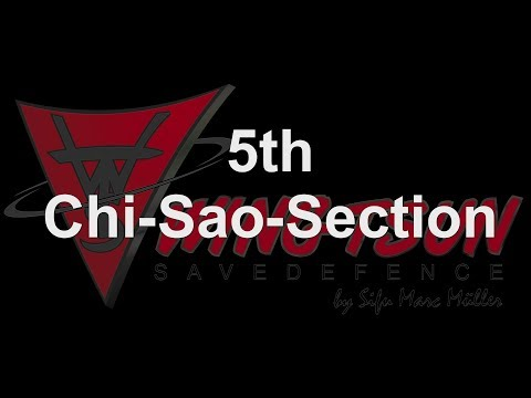 """""""5th Chi-Sao-Section"""" - by Wing Tsun Savedefence"""
