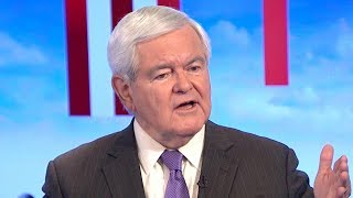 Gingrich calls President Trump 'pugnacious,' says he has 'compulsion to counterattack'