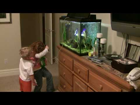 Drinking Fish Tank Water Filtered with a MSR Water Filter