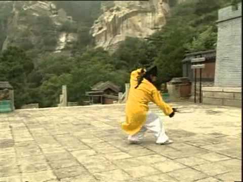 WUDANG Three Treasures TAI CHI by Master Wang Ping !