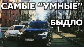 """Подборка САМЫХ """"УМНЫХ"""" водителей #335"""