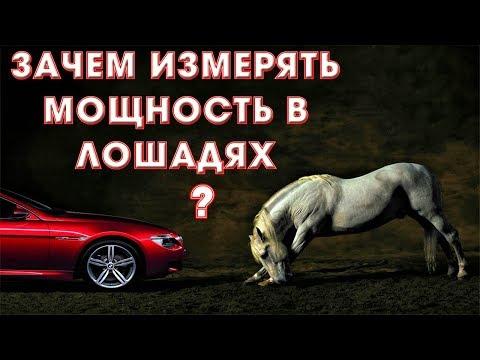 Как понять лошадиные силы в машине