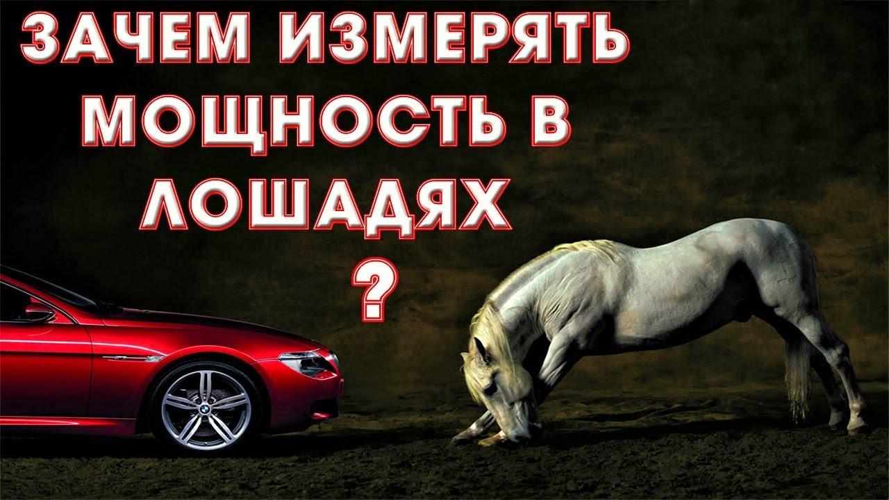 Почему мощность измеряется в лошадях?Идеальный маркетинговый ход.