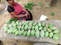 FRESH MANGO GRAVY Perpared By My Mummy in My Village | VILLAGE FOOD