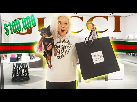 Buying Everything My Dog Touches | IN THE GUCCI STORE | CUTE Chihuahua