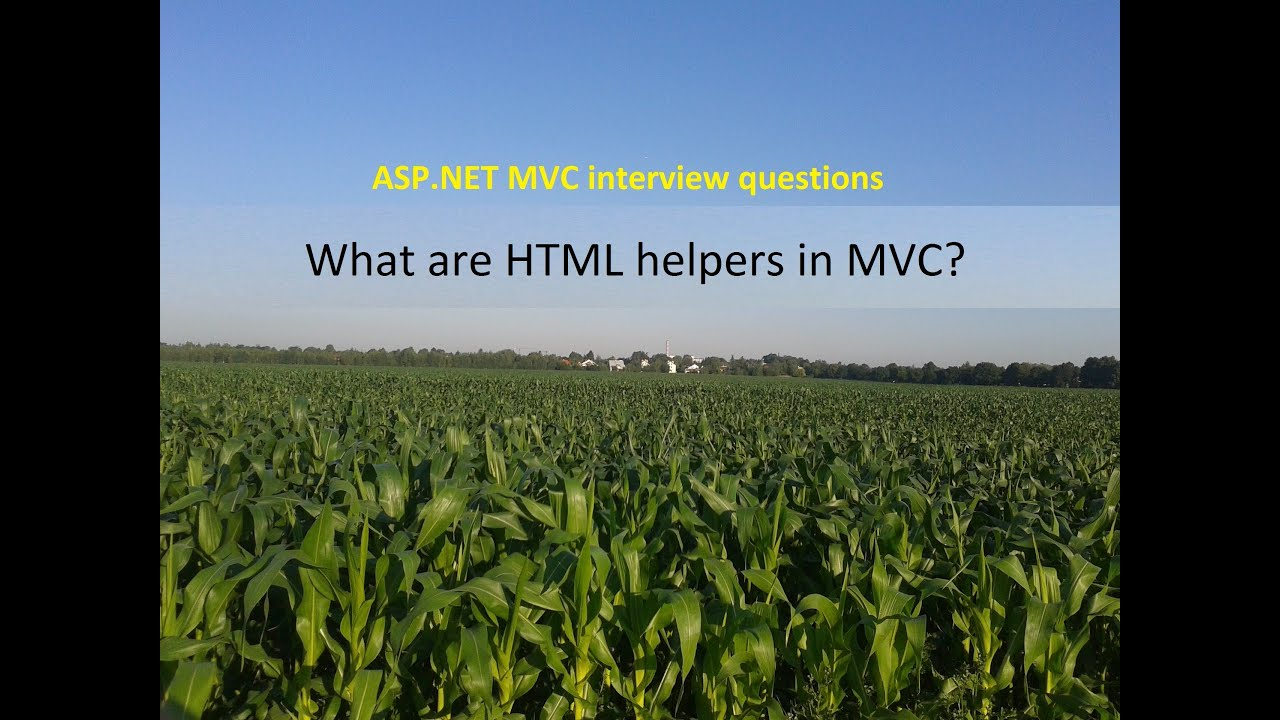 Mvc write custom html helper