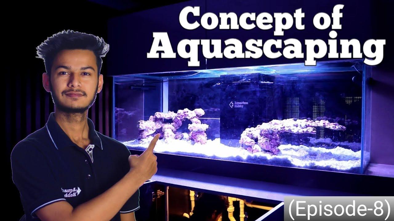learn aquascape concept - 6foot marine tank (episode-8)