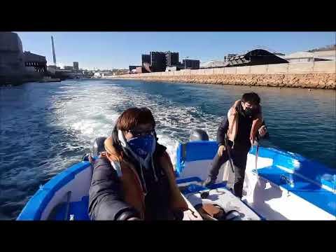 FLYING PENGUIN semi submarine boat Video 20171207