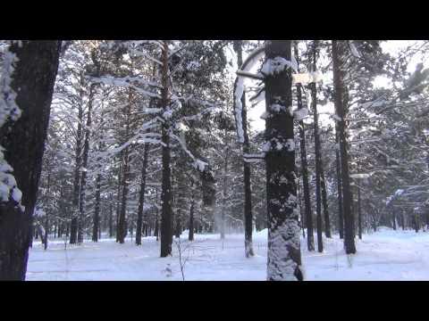 Лесосибирск кинокомплекс Луч в 5 микрорайоне 12 января 2014 года (серия 6)