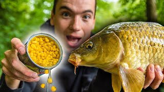 How To Catch Cąrp With Corn! (Easy and cheap bait for carp fishing)