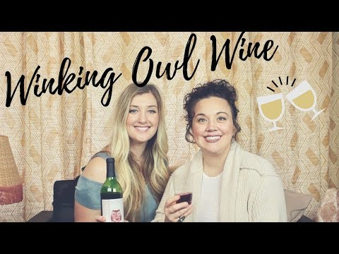 Winking Owl Wine Review | Aldi Wine