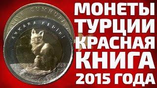 видео Турецкая золотая монета