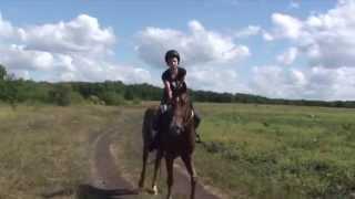 клуб конного туризма