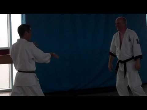 No 10 Inoue Yoshiomi Sensei at the British Aikido Association Summer School 2016