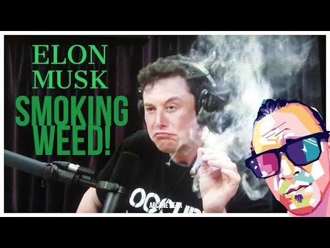 Elon Musk Smokes Weed w. Joe Rogan /  MY REACTION & Public Opinions!
