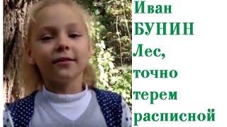 Иван Бунин Лес точно терем расписной