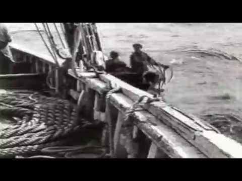 Longlining on the Bad Dog Documentary - Fishtown Part 2 (Complete)