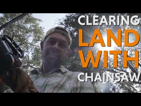 CLEARING LAND WITH CHAINSAW