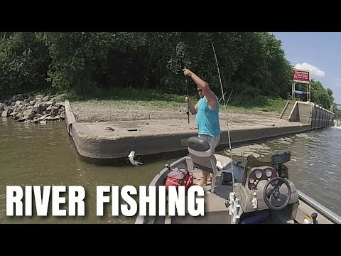White Bass Fishing -- Illinois River 2016
