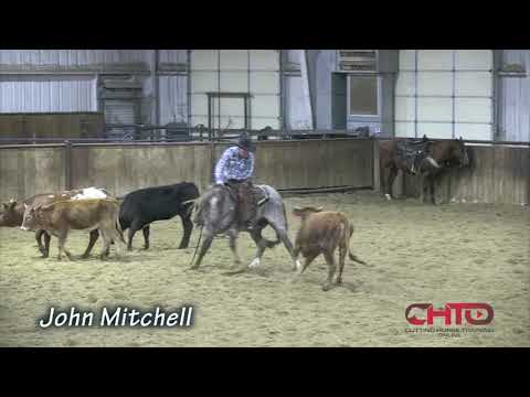 How To Teach A Horse To Read The Cow Through The Middle Of The Turn with John Mitchell!