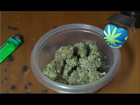 Common Weed Denominations & Prices