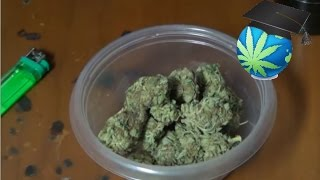 Normal Weed Denominations & Prices - For YOUR Area