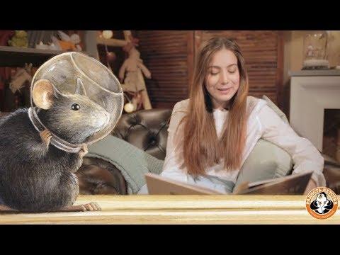 Мультфильм армстронг невероятное путешествие мышонка на луну
