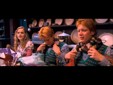 Harry Potter And The Order Of The Phoenix - Christmas Scene (HD)