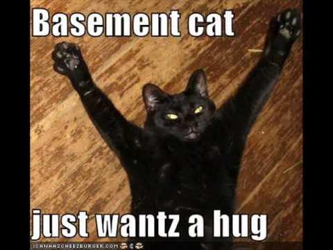 LOL Cats Valentine