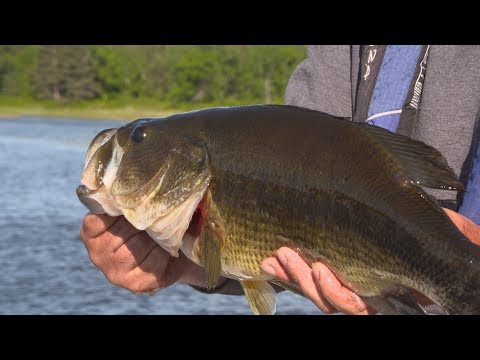 BASS Fishing Small Lakes - Leech Lake Minnesota Area- Jason Mitchell Outdoors