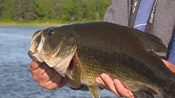 BASS Fishing Small Lakes - Leech Lake Minnesota Area- Jason Mitchell Outdoors