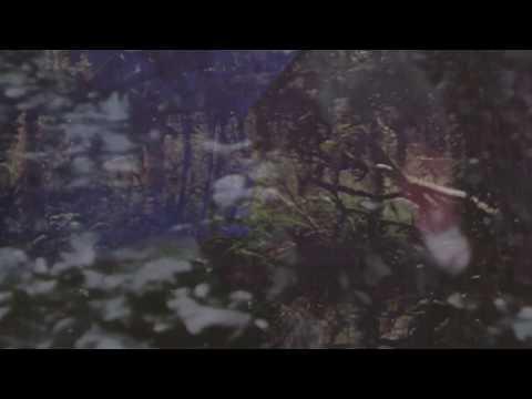 Yseulde - Permanent Bloom
