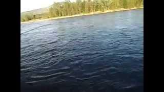 Красноярский край рыбалка,Вот где много рыбки.