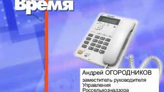 Сибирская язва рядом (31.08)