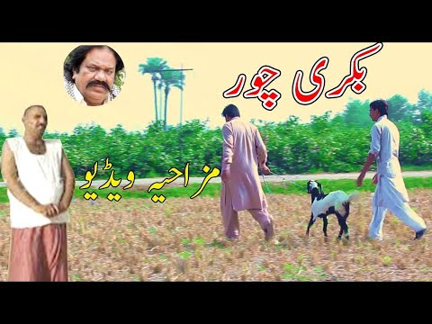 Bakri Chor - Kirlo - Airport Manzoor Kirlo and Airport - man