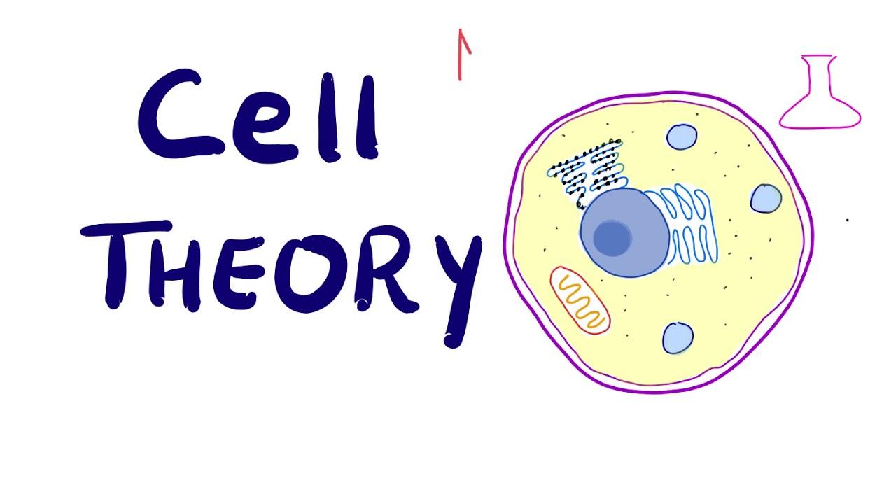 Αποτέλεσμα εικόνας για cell theory