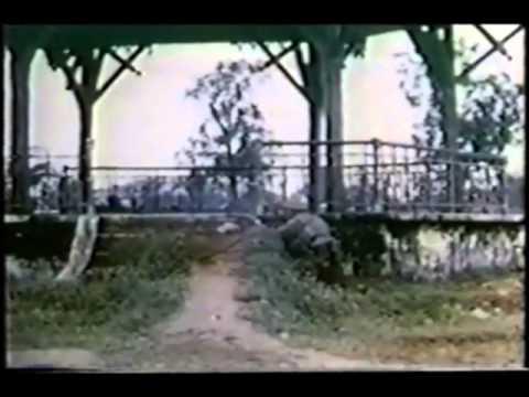 Vietnam War Bobby Fuller Four - I Fought The Law.wmv