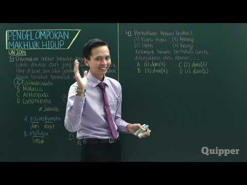 Quipper Video - IPA - Pengelompokan Makhluk Hidup [SMP]