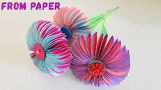 FLOWERS OF PAPER. Как сделать цветы из бумаги своими руками на 8 марта. Оригами. (Эмилия)