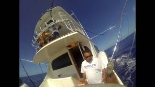 2017 Bermuda Big Game | Team Sea Striker | Spearfish