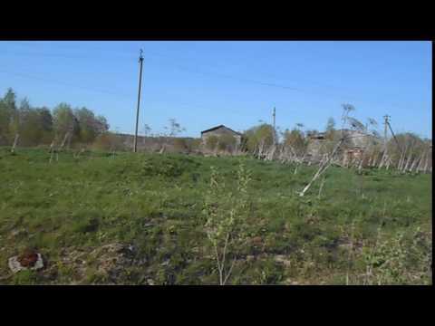 д. Сологубовка, Кировский район Ленобласти