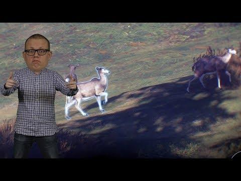 JAKTEN PÅ STORBAJSAREN | The Hunter Call of The Wild