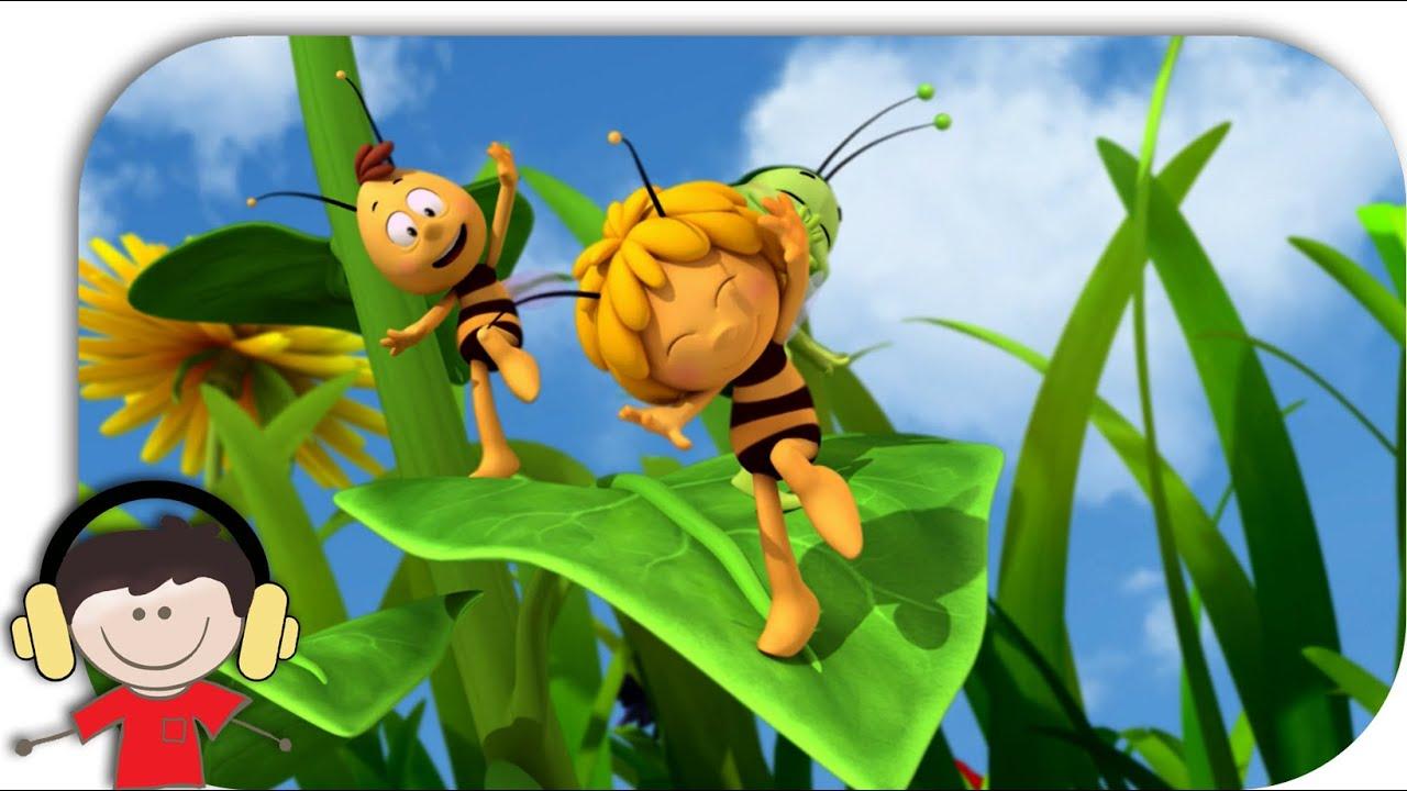 Kreuzspinne Bei Biene Maja