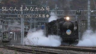 SLぐんまみなかみ号Part2 C61 20+12系客車(撮影地:水上)