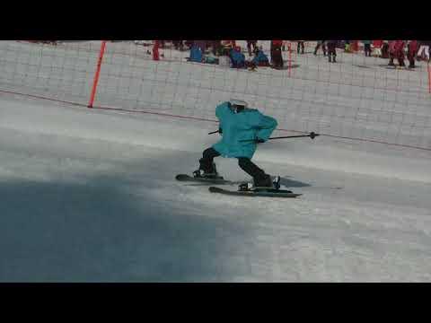 Skiing robot in Pyeong Chang 2018