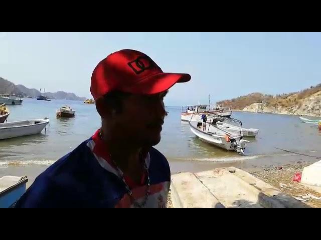 Bonanza de peces en Taganga
